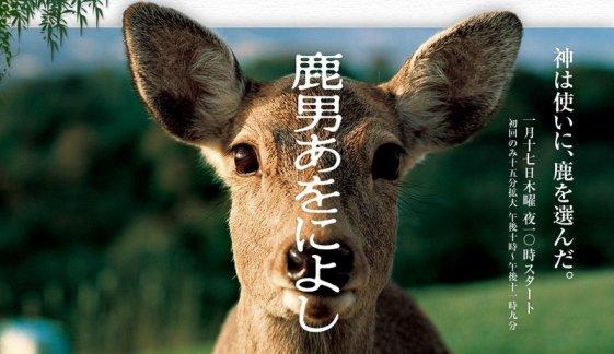 shikaotokoawoniroshi.jpg